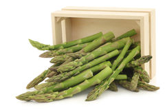 fresh green asparagus tips in a wooden box Stock Images