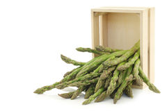 fresh green asparagus tips in a wooden box Royalty Free Stock Image