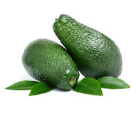 Fresh green avocado fruits Royalty Free Stock Photos
