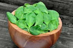 Fresh green baby spinach leaves in a bowl on wooden table. Fresh green baby spinach leaves in a bowl on gray wooden table Royalty Free Stock Images
