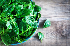 Fresh green baby spinach leaves in a bowl on a rustic wooden tab Stock Images