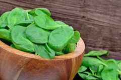 Fresh green baby spinach leaves in a bowl on wooden background. Close up Royalty Free Stock Photos