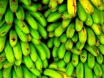 Fresh Green Banana Royalty Free Stock Photography