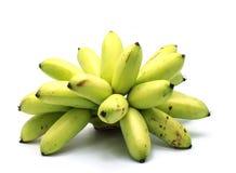 Fresh Green Banana on  white background. Royalty Free Stock Photography