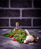 Fresh green basil with garlic and olive oil. Selective focus Stock Image