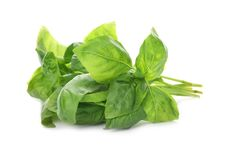 Fresh green basil leaves. On white background royalty free stock photos