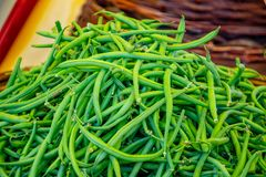 Fresh green bean in a farmer agricultural open air market, seasonal healthy food. Concept of biological, bio products, bio ecology, grown by yourself royalty free stock photography