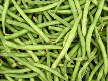Fresh green bean species Stock Photo