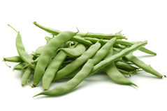 Fresh green beans. Bunch of fresh green beans  on white background Stock Photography