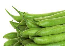 Fresh Green Beans. A pile of crisp fresh green beans on a white background stock photography