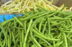 Fresh Green Beans called Jade on display in Farmers Market.  Grown in Portland, Oregon, America. Horizontal of green beans in a blue bin with yellow Romano beans Stock Photography