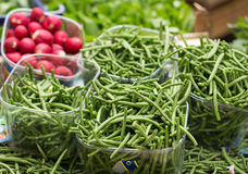 Fresh green beans Royalty Free Stock Images