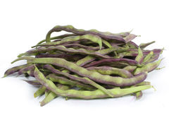 Fresh Green Beans isolated Royalty Free Stock Photo