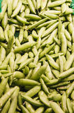 Fresh Green Beans in Market Stock Images