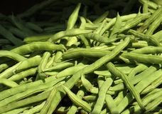 Fresh Green Beans Stock Photos