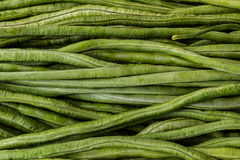 Fresh green beans. Royalty Free Stock Image