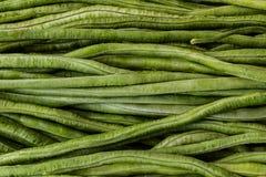 Fresh green beans. Royalty Free Stock Image