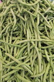 Fresh green beans Royalty Free Stock Image