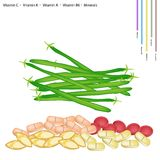 Fresh Green Beans with Vitamin C, K, A and B Royalty Free Stock Photo