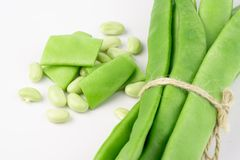 Fresh green beans. On white background royalty free stock images
