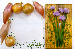 Fresh green blooming chives, shallots and yellow onion. On white and olive wood background Stock Photos