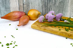 Fresh green blooming chives, shallots and yellow onion. On white and wooden background Stock Photos