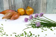 Fresh green blooming chives, shallots and yellow onion. On white and wooden background Royalty Free Stock Photography