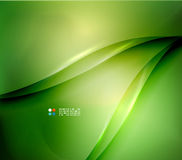 Fresh green blur wave and colors Stock Images