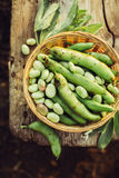 Fresh green broad beans. In the open air. Healthy food. Top view Royalty Free Stock Photography