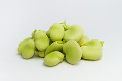 Fresh green broad beans. Group of fresh green broad beans healthy isolated on white background Stock Photo