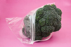 Fresh green Broccoli Stock Photo