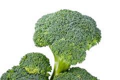Fresh green broccoli. Fresh raw green broccoli closeup isolated on white background Stock Photography