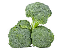 Fresh green broccoli Stock Images