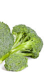 Fresh green broccoli Royalty Free Stock Image