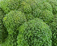 Fresh green broccoli Stock Photo