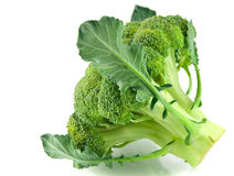 Fresh green broccoli Royalty Free Stock Photos