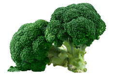 Fresh Green Broccoli  isolated on white background Royalty Free Stock Photo