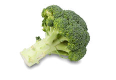 Fresh and Green Broccoli Pieces Royalty Free Stock Images