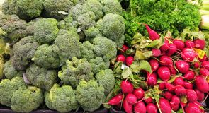 Fresh green broccoli and radishes. Broccoli is considered as the worlds healthiest food. It is an all star food with many health benefits such as low in calories stock images