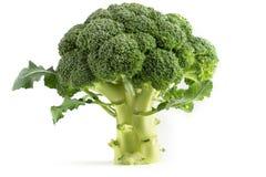 Fresh green broccoli stock photos