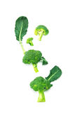 Fresh green broccoli on white background. The fresh green broccoli on white background Royalty Free Stock Photography