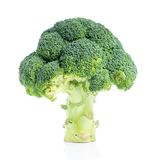 Fresh green broccoli  on white background Stock Images