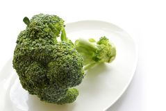Fresh green broccoli on white plate Stock Photography