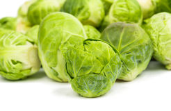 Fresh green Brussel Sprouts. Background or texture of fresh green Brussel Sprouts Stock Images