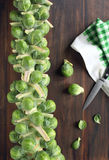Fresh green brussels sprouts. And knife on a wooden background Stock Photo