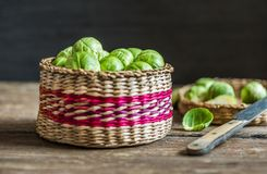 Fresh Green Brussels Sprouts. Many Fresh Green Brussels Sprouts in a Basket Stock Photos
