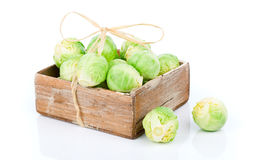 Fresh green brussels sprouts Stock Image