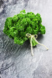 Fresh green bunch of parsley Royalty Free Stock Image