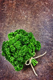 Fresh green bunch of parsley Royalty Free Stock Photo