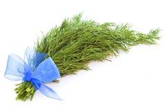 Fresh green bundle dill  on white Stock Photo